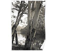 Denmark River  Poster