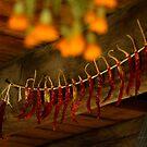 Lincoln Log Cabin Home 2 by Bevin Allison