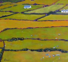 Green Fields, Ireland by eolai