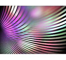 Shiny Purple Shell Photographic Print