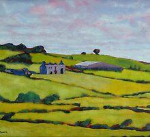 Ruined House, Ireland by eolai