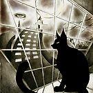 Cat by Hiroko Sakai