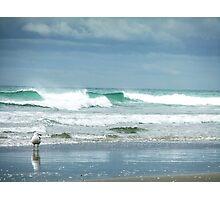 Seagull at Maunganui Beach Photographic Print