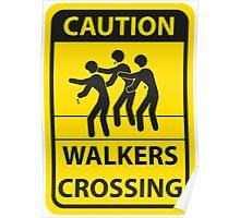 Walker Crossing Poster