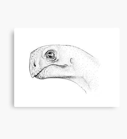 My Little Shellbiter Canvas Print