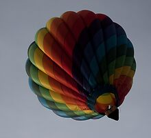 Battle Creek Hot Air Balloon by Tina Logan