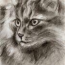 Cat Drawing by Hiroko Sakai