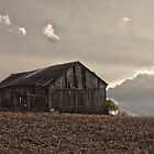 Color Barn near Sandusky, MI by Tina Logan