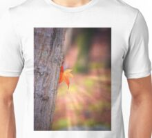 Autumnal delights 2 Unisex T-Shirt