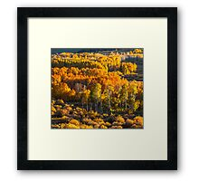 Conway Summit, Mono County, CA Framed Print