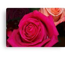 Peek at two roses Canvas Print