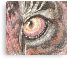The Tiger's Eye Canvas Print