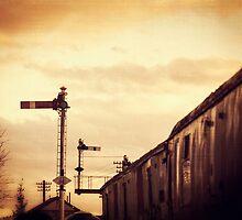 Signals by Nicola Smith