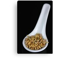 Fennel Seeds Canvas Print