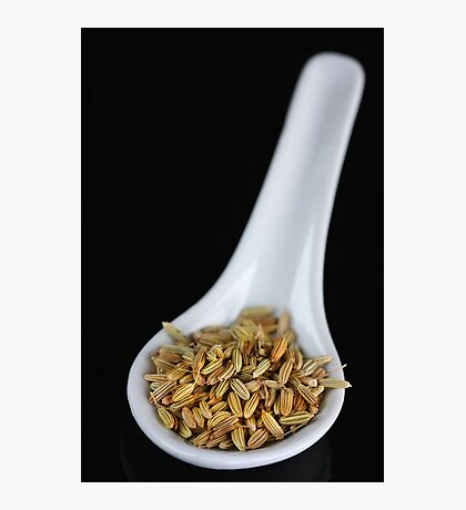 Fennel Seeds Photographic Print