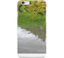 vineyard reflection iPhone Case/Skin