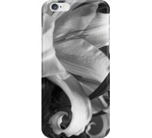 Lily #49 iPhone Case/Skin