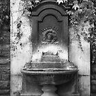 Fountain at Szentharomsag Ter by BH Neely