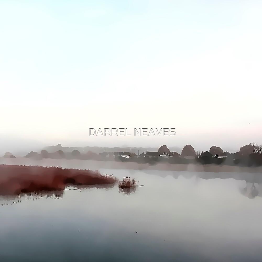 misty one by DARREL NEAVES