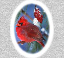 Male Cardinal Sumac Branch Winter Hoodie