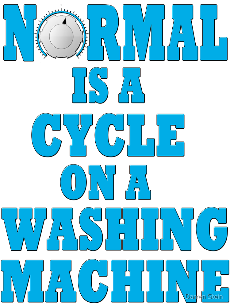 Normal is a cycle on a washing machine by Darren Stein