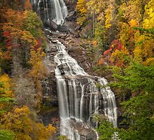 Whitewater Falls 1 by Joye Ardyn  Durham