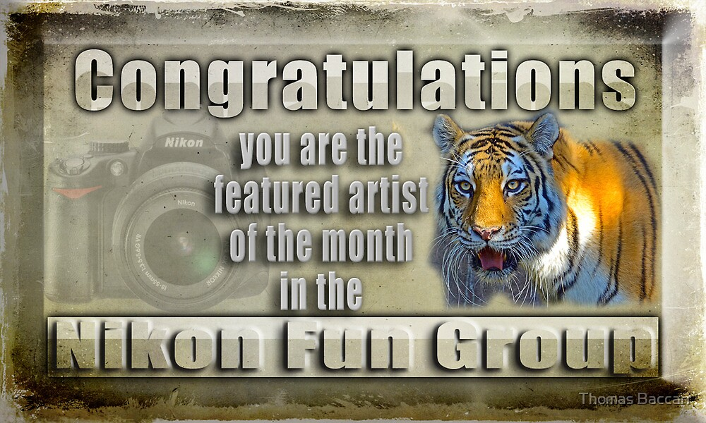 Featured Artist Banner Nikon Fun Group by TJ Baccari Photography