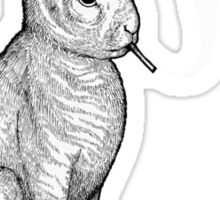 Carrot Smoke Trick Sticker