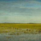 The Lowlands by JKKimball