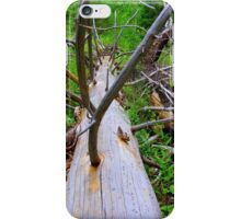 If A Tree Falls In The Forest.......... iPhone Case/Skin