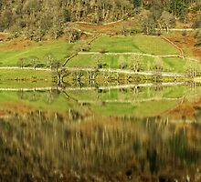 A Lakeland Abstract by Jamie  Green