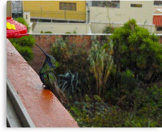 Rainy Days And Mondays by Al Bourassa