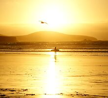 The Surfer and The Seabird by Sally J Hunter