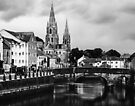 Saint Fin Barre's Cathedral In Cork Ireland by Yukondick