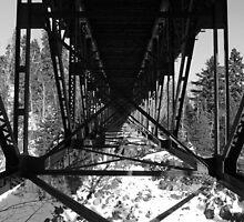 Bridge Xing by Culrick99