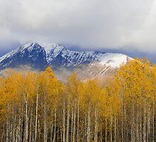 Mount Owen by Armando Martinez