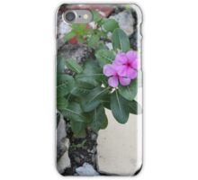 Philippine flowers iPhone Case/Skin