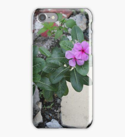 Philippine flowers iPhone Case/Skin