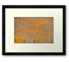 Aspen Brushes Framed Print