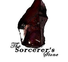 The Sorcerer's Stone by Fiona Boyle