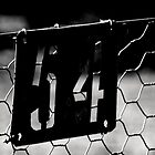 The Rabbit Proof Fence ... gate 54 by myraj