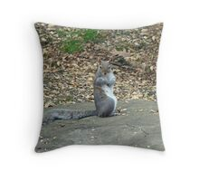 Do It Gangnam Style - Gray Squirrel goes Korean Throw Pillow