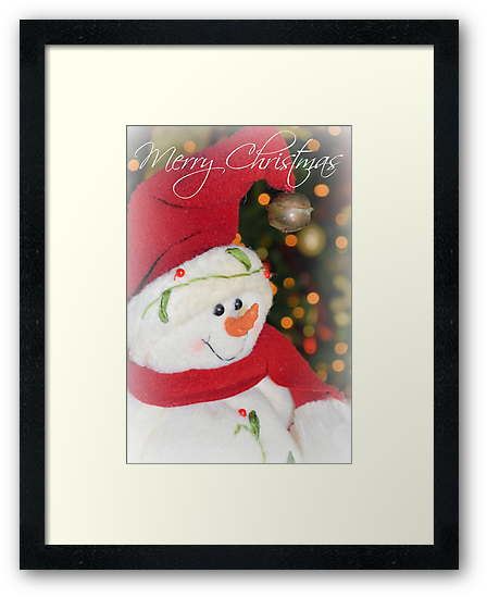 Merry Christmas From Frosty by ©Dawne M. Dunton