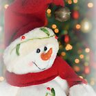Frosty Christmas 2 by Dawne Dunton