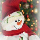 Frosty Christmas 2 by ©Dawne M. Dunton