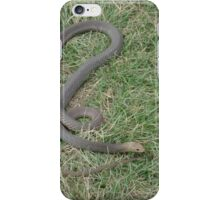 Deadly brown snake in grass iPhone Case/Skin