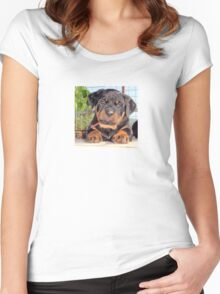 Female Rottweiler Puppy Photographic Portrait Women's Fitted Scoop T-Shirt