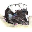 Skunk Baby by Lynn Oliver