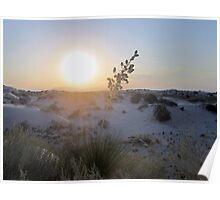 White Sunset Poster