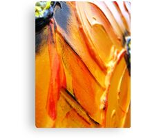 Orange Flower Petals Canvas Print